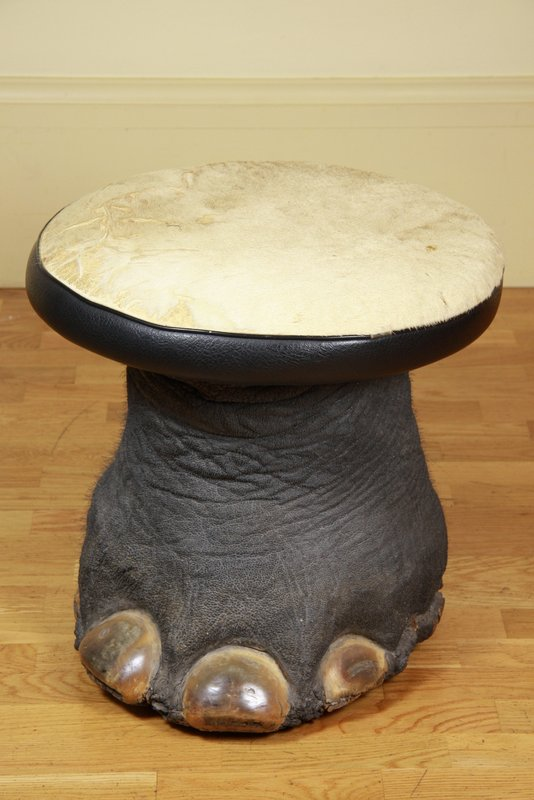 An Elephant S Foot Stool The Fine Amp Decorative Arts
